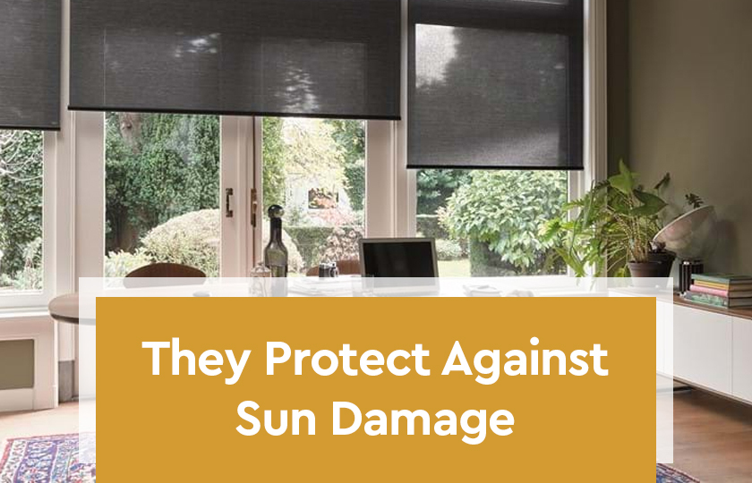 They Protect Against Sun Damage