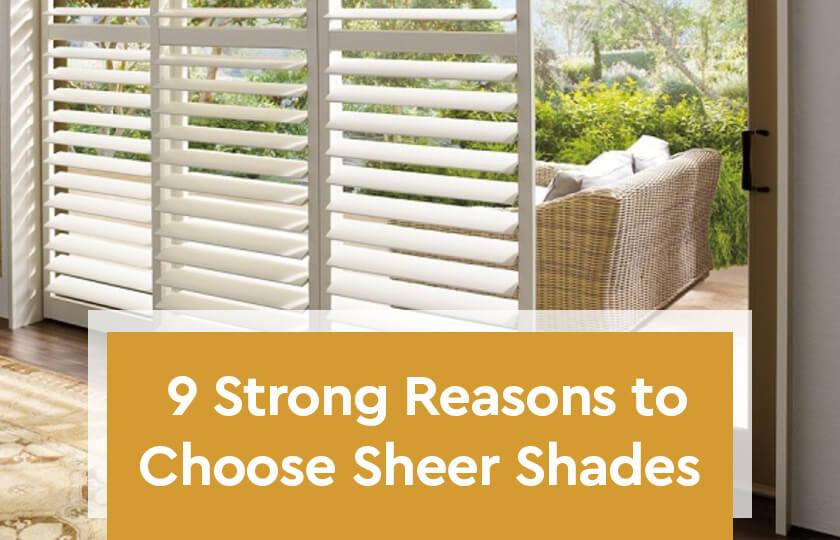 9-Strong-Reasons -to –Choose- Sheer- Shades