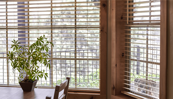 Mini window blinds