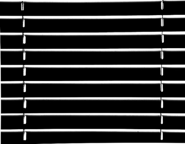 zebra-window-blinds