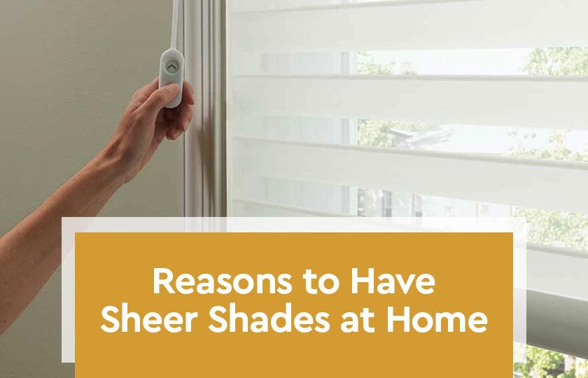 Reasons-to-Have-Sheer-Shades-at-Home